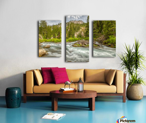 Periodic Spring Flowing into Swift Creek Canvas print