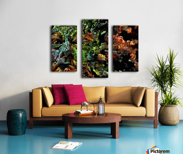 The Face of Nature Canvas print
