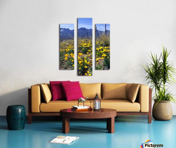 April at Aquirre Springs Canvas print