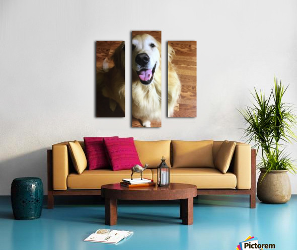 Happy Golden Canvas print