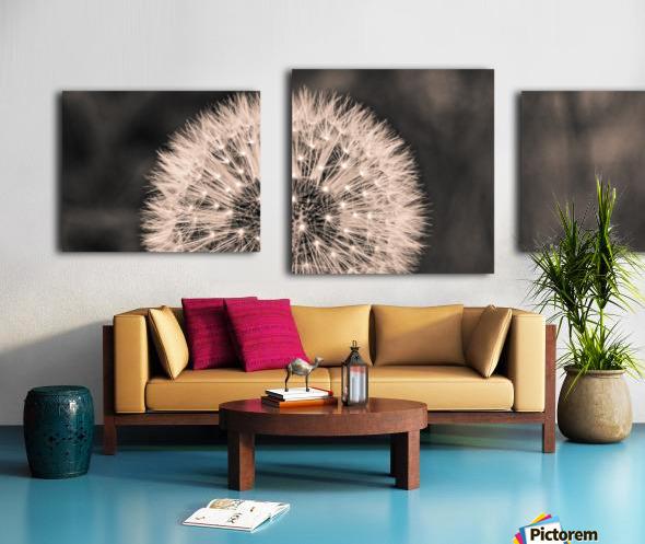 Late Season Dandelion 2 Canvas print