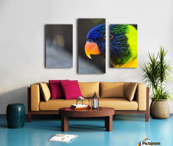 _LAB5536s Canvas print