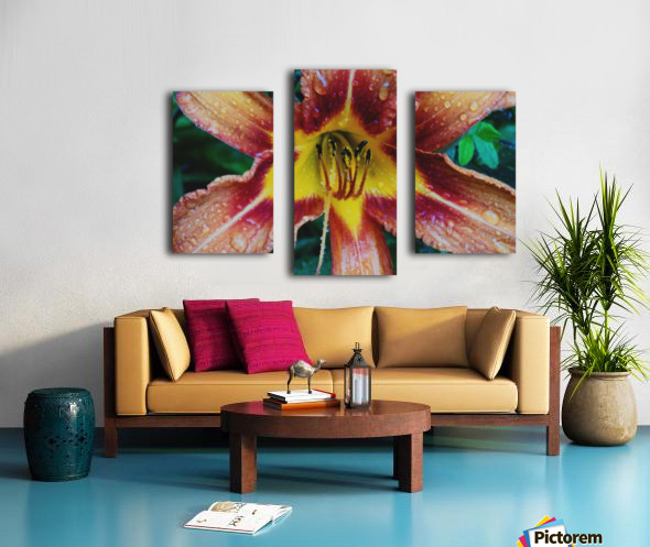 Eye of the tiger lily Canvas print