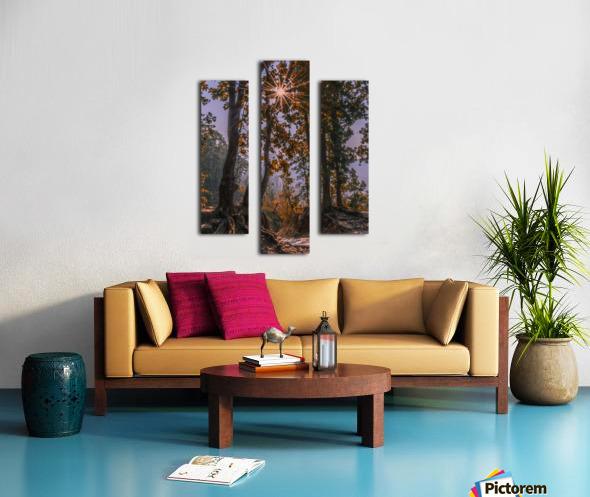 DSC_0328 Canvas print