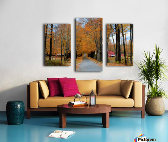 Autumn Three Maple Dr. Manchester VT Canvas print