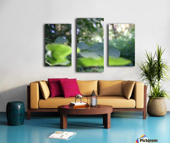 blur leaf Canvas print