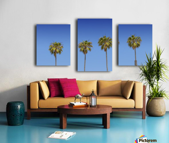 Lovely Palm Trees   Panorama Canvas print