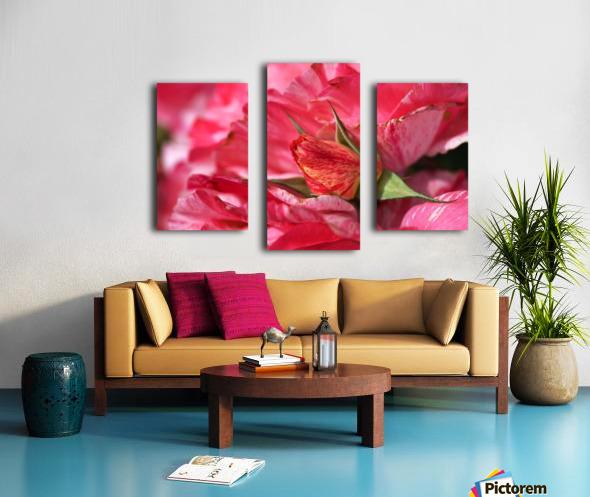 Rose Bud On My Petals Canvas print