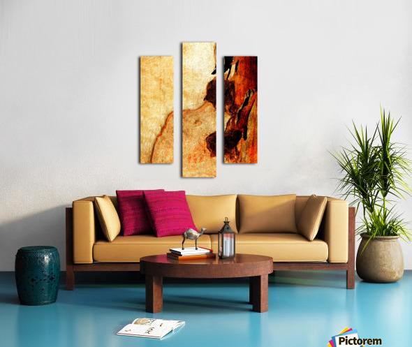 Murray Gum Tree Bark 3 Canvas print