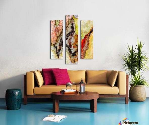 Aussie Gum Tree Bark - 9 Canvas print