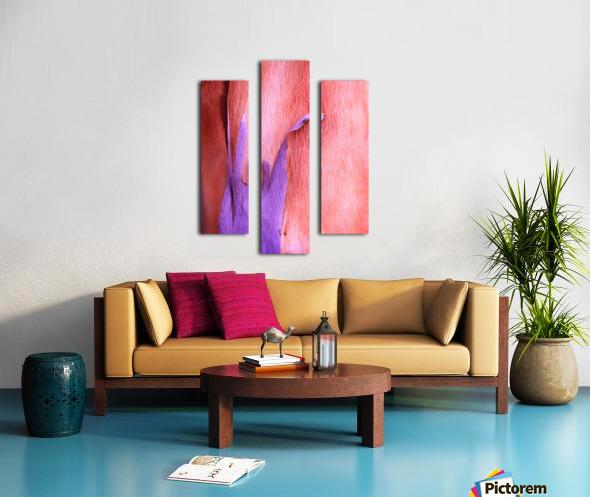 Salmon Gum Tree Bark 8 Canvas print