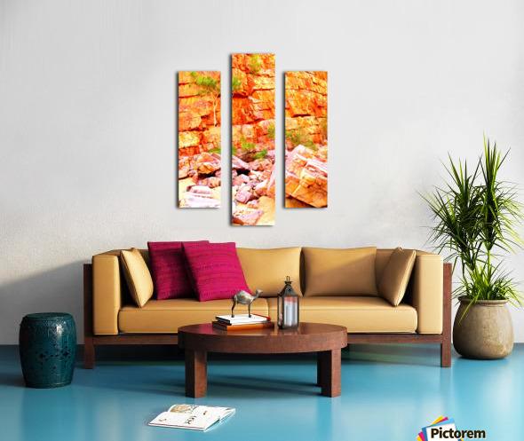Surviving - Ormiston Gorge Canvas print