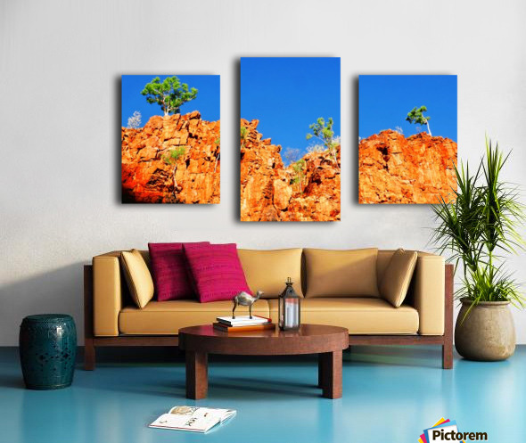 Skyline - Ormiston Gorge Canvas print
