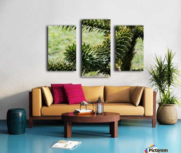 Plant Image Canvas print