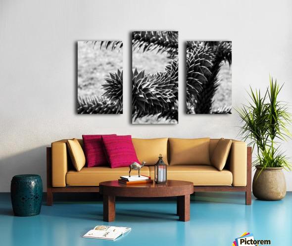 Plant Image BW Canvas print