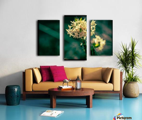 Rice Flower Canvas print