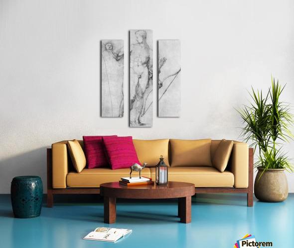 Apollo Canvas print