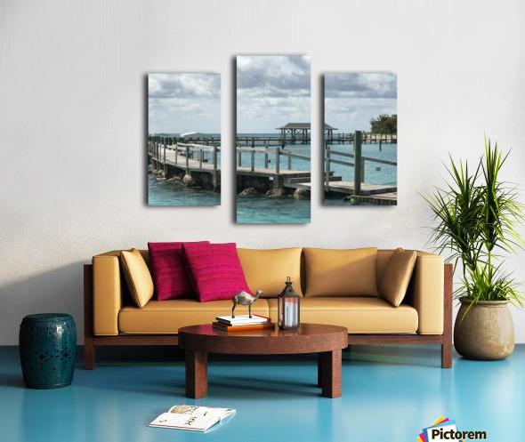 Dolphin Cove Canvas print