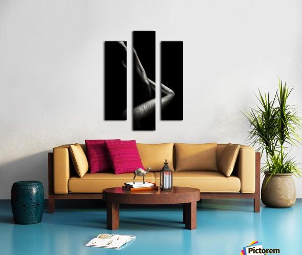 Legs in Fishnet Stockings 1 Canvas print