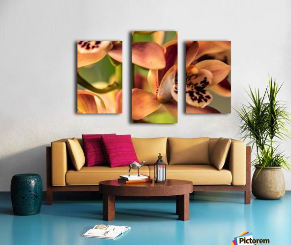 Blush Orchids Canvas print