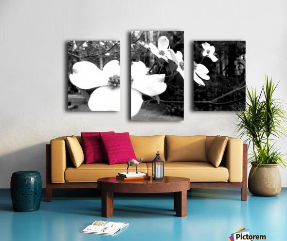 North Carolina Dogwood Flowers  Canvas print