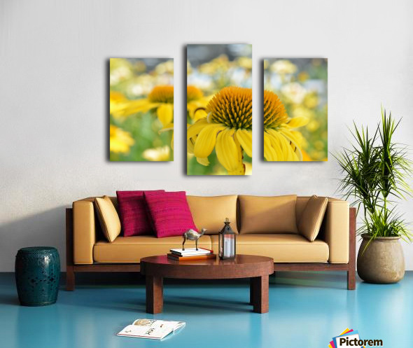 Yellow Flowers Photography Canvas print