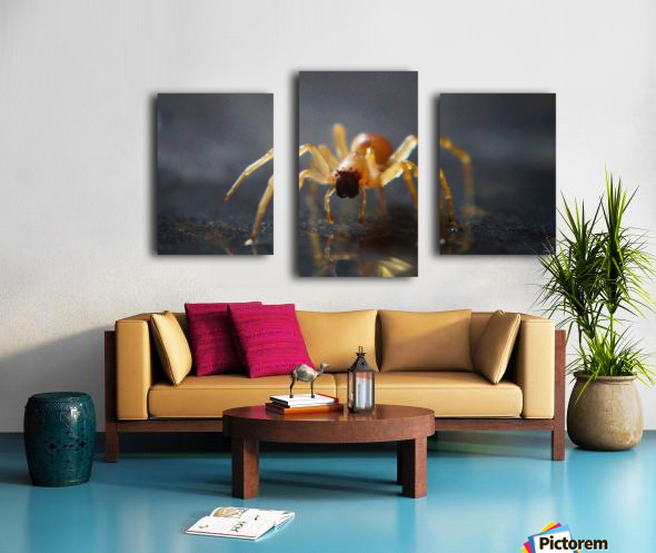 Best spider leg forward Canvas print