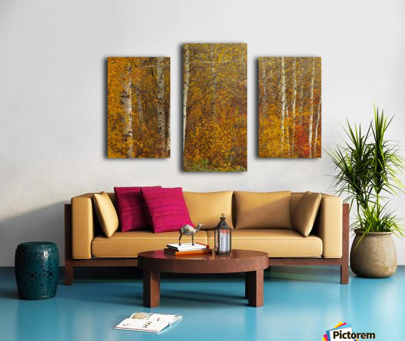 Oil Painting Canvas print