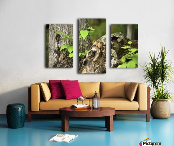 Chipmunk on tree Canvas print