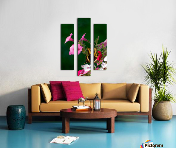 Butterfly on petunias Canvas print
