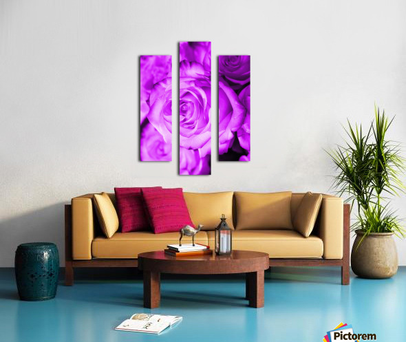 Rose purple  Canvas print