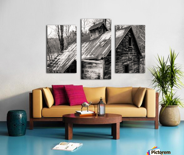 Abandoned Shack 6 Canvas print