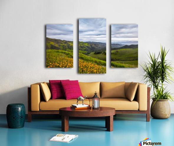 California is home Canvas print