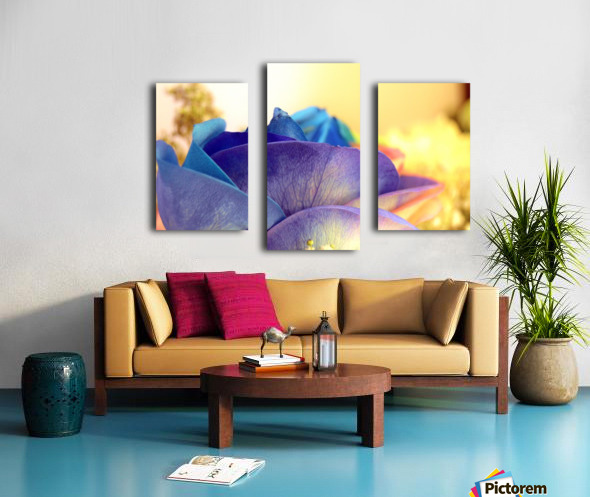 Colourful Days Canvas print
