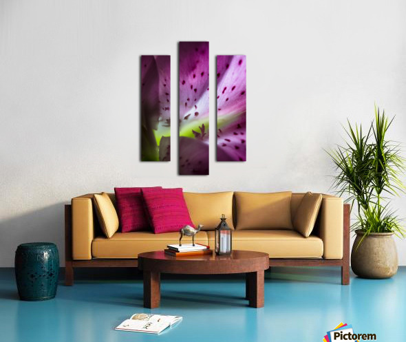 Pinky 2 Canvas print