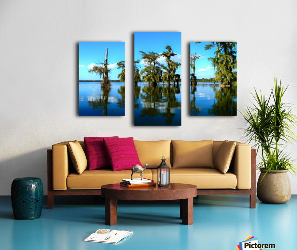 Reflect Much Canvas print