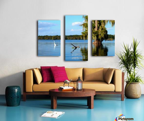Swim or Not Canvas print