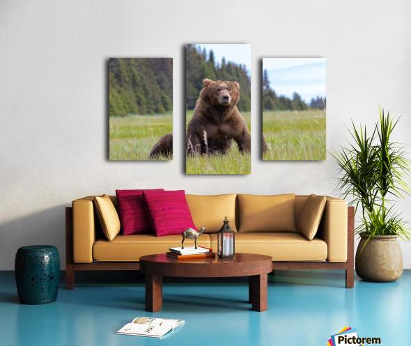 Big boy in the Meadow Canvas print
