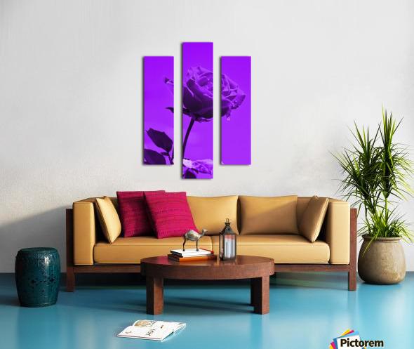 Love Rose purple 8665 Canvas print