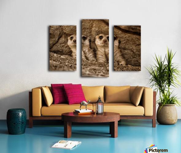 The Meerkat Twins Canvas print