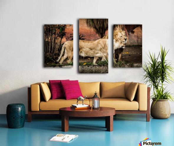 The Loving Lion Couple Canvas print