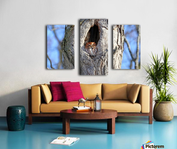 Enjoying The Winter Sun Canvas print