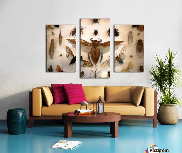 Biodiversity Canvas print