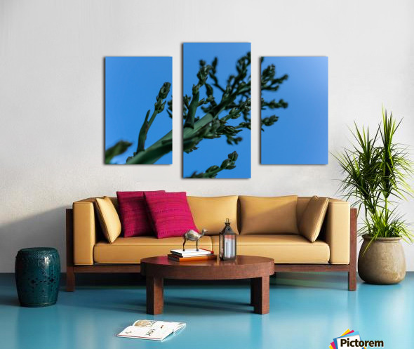 Yucca Skies Canvas print