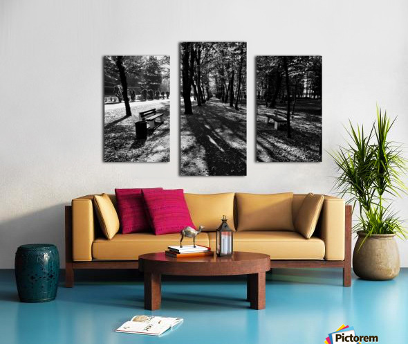 Park Hour Canvas print