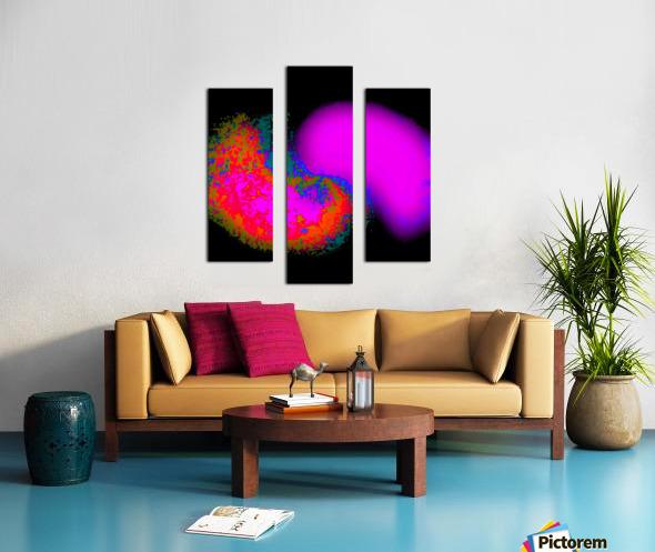 Organic Synergism 41 Canvas print