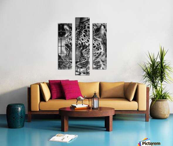 Leopard in Black & White Canvas print