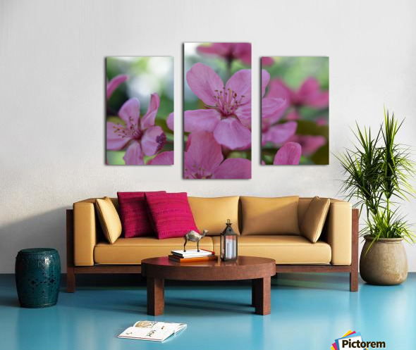 Floral Photography  Canvas print