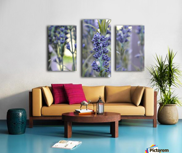 Floral Photograph  Canvas print