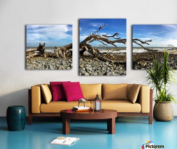 Driftwood Beach Panorama 101 Canvas print